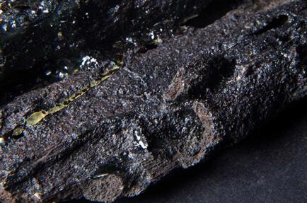 奇楠香成因奇巧,它是中空香树(密香树种)被蚂蚁或野蜂